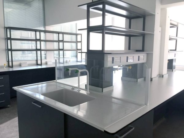 peninsular lab sink area